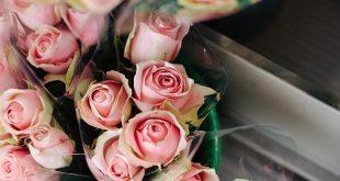 חנות פרחים בתל אביב